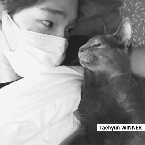 Taehyun dari Boygroup WINNER