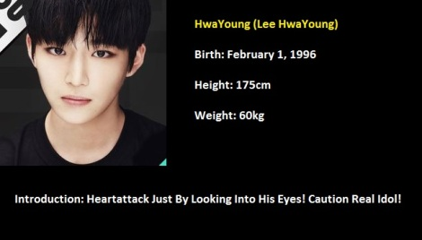 HwaYoung Boys24